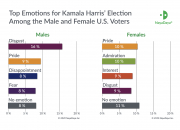 Study: Kamala Harris is a Wild Card in the Highly Emotional U.S. Presidential Race